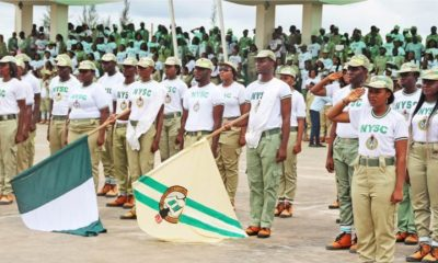 I just finished NYSC, how do i get a well-paid job?